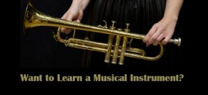 want-to-learn-a-musical-instrument-1